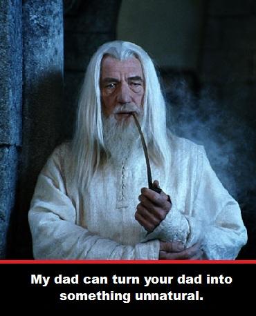 Gandalf the Dad. LOTR