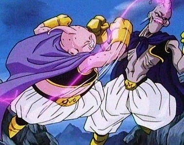 Buu vs Buu shrink